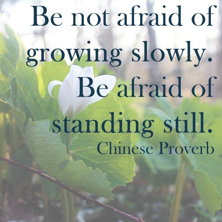Be not afraid of growing slowly. Be afraid of standing still. Chinese Proverb