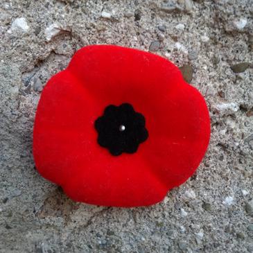 Canadian legion poppy