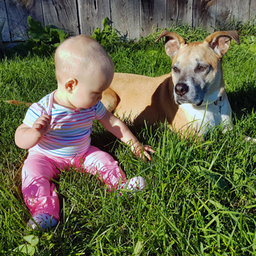 Baby and dog sitting beside each other in the grass